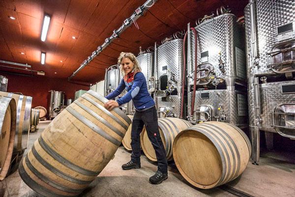 Wehrli Weinbau AG Support Your Aarau